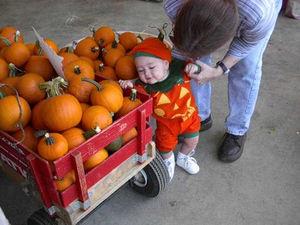 Pumpkinbaby11