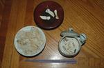 Matsutake2